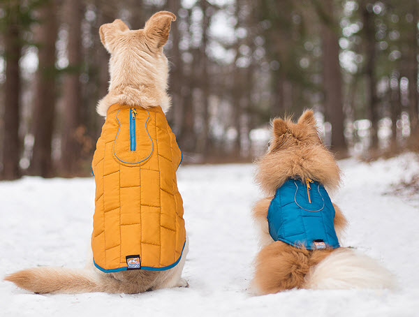 kurgo-dog-coats