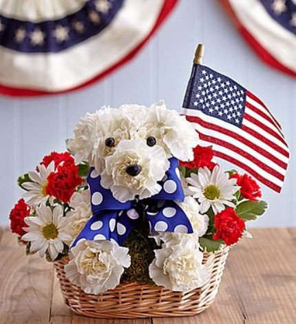 patriotic-dog-flowers