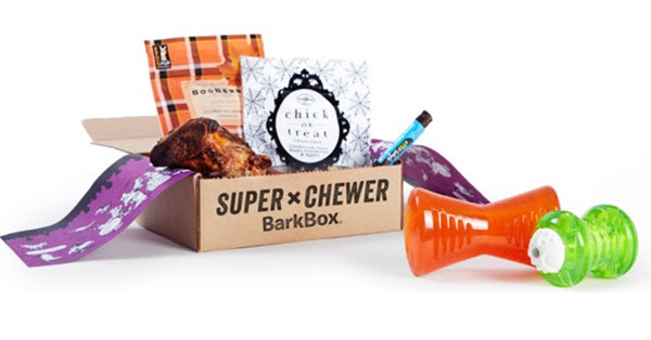 super-chewer-box-for-dogs