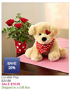 lovable-pup-flowers-gift