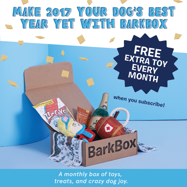 free-barkbox-toy