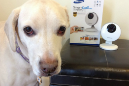 Samsung SmartCam HD Pro Review #SmartCamWoof #Giveaway