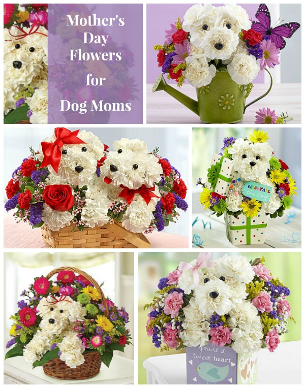 dog flowers | Woof Woof Mama