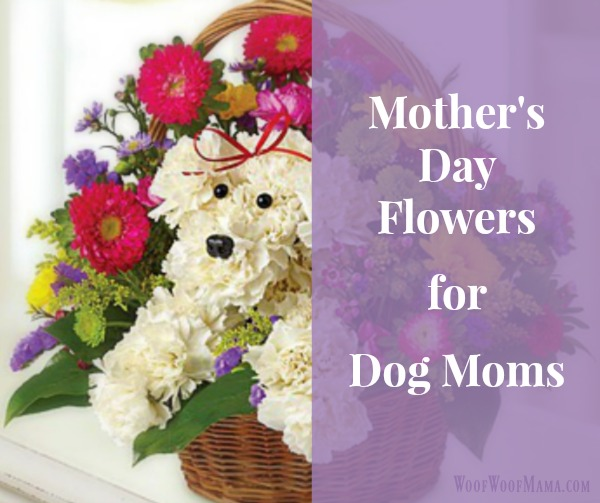 Looking for a special and unique idea for Mother's Day? The folks over at 1800flowers.com have a whole line of flower arrangements for dog lovers.