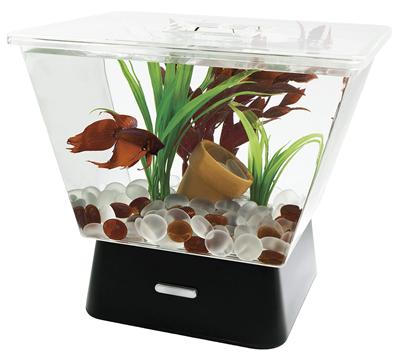 Pet deals pet coupons free stuff and money saving tips for Fish tank deals