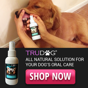 Natural Dental Spray for Dogs