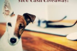 Enter to WIN Our $100 Fall Cash Giveaway