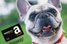 Enter to WIN Our $100 Amazon Gift Card Giveaway!