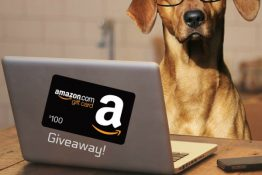 Just Because It's May $100 Amazon Gift Card Giveaway