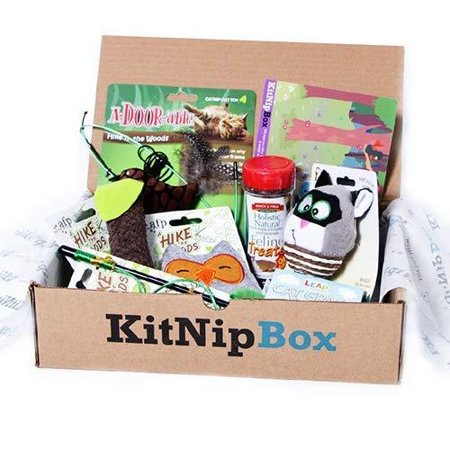 What is KitNipBox?