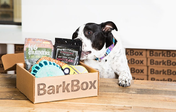 BarkBox deal with bonus toy