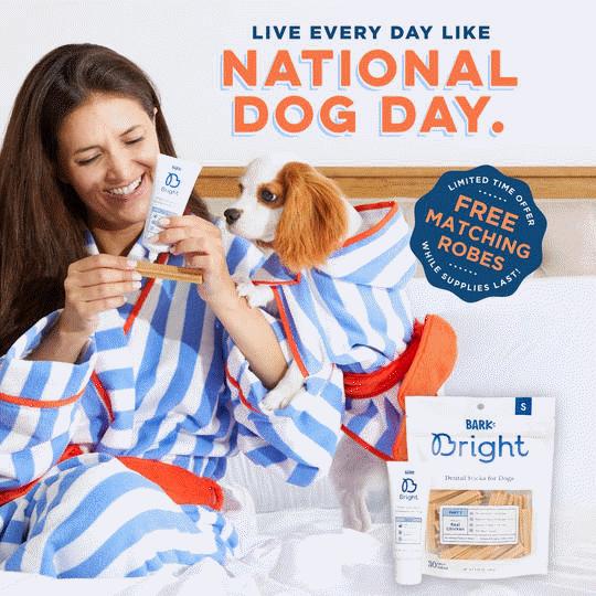 Dog dental kit free robes