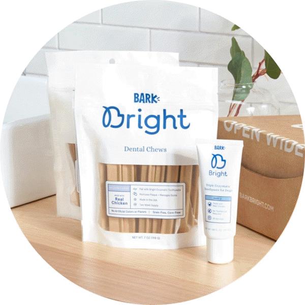 Bright Dental Kit for Dogs