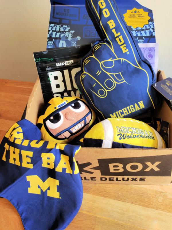Foam Finger Dog Toy in Michigan Football BarkBox