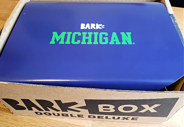 College Football BarkBox Review